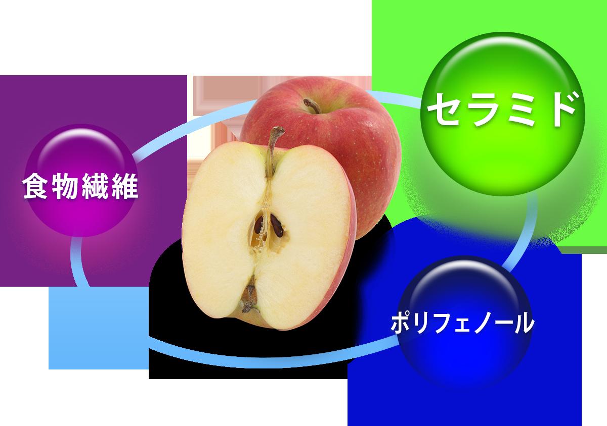 りんごの有用成分